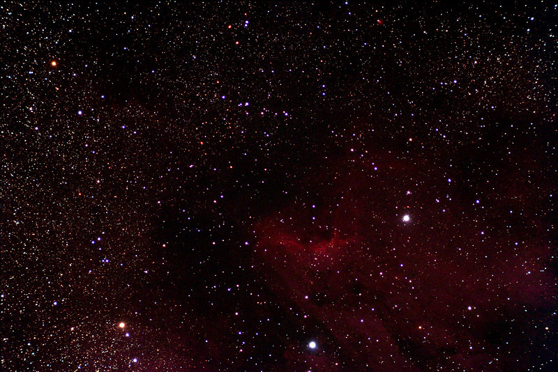Pelican Nebula taken from Lake of Bays using 80mm ED triplet from William optics<br /> Canon 350D modified.  10x5min exposures at 800 ISO.  by Dennis Gasparotto