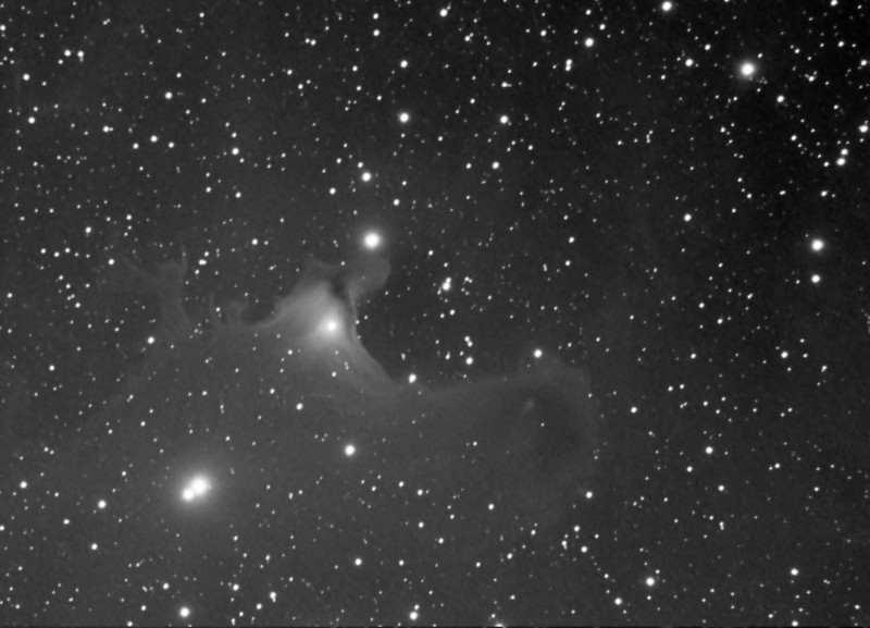 HAPPY HALLOWEEN.....VdB141 (the cosmic surfers)....2.5hours of Lum only, C9.25 @f6.3, ML8300<br /> Lynn Hilborn, WhistleStop Obs