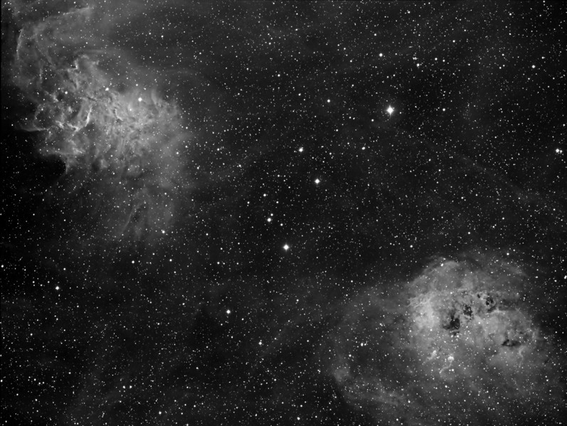 The Tadpoles (IC 410) and the Flaming Star Nebula (IC405) in Ha. NP101is @f4.3 and FLI ML8300 at -35C.<br /> 15x20m 7nm Ha. Taken Nov 10,2009 by Lynn Hilborn, WhistleStop Obs, Grafton,Ontario.