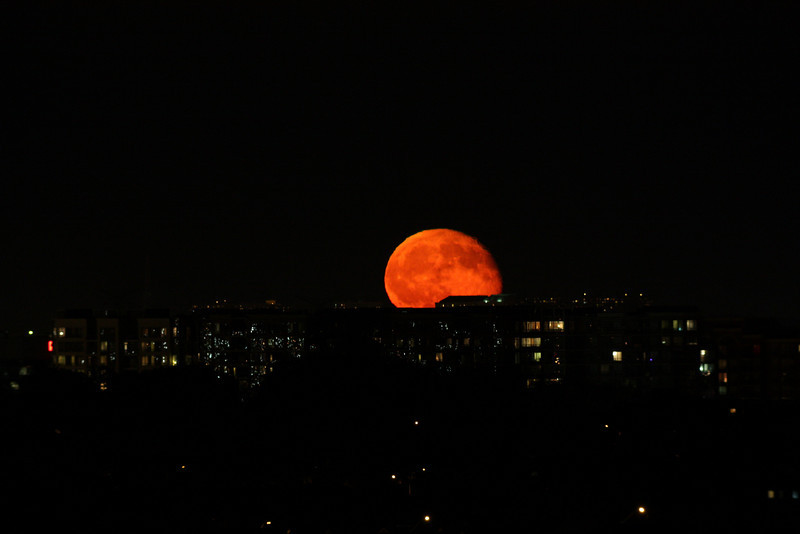 Moonrise in Richmond Hill.  William Optics 66mm f/5.9 SD Refractor, Canon XSi, 800 ISO, 1/16 sec.  July, 2009<br />  Dave Cotterell
