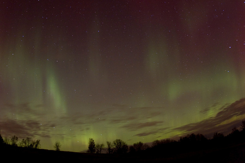 "Andreas Gada, Aurora October 24, 2011 9:40 pm EDT as seen from Sandy Flats Rd, Roseneath.  Canon 40D, Canon 10-22mm lens set at 10mm and f/3.5.  ISO 1600, 15"" exposure."
