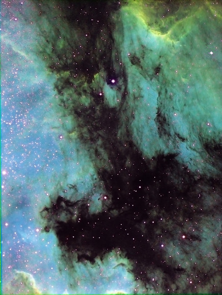 Tricolour narrowband of IC5070 (Pelican Nebula) and NGC7000 (North American Nebula).Image taken by Lynn Hilborn with ML8300 camera and NP101is scope. WhistleStop Obs, Sept 2009.