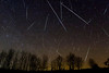"Geminid Meteor Shower Composite North, Dec 14, 2013, 52 images taken between 12:25 and 7:17 EST with background image taken at 5:51 EST.  Canon 40D, Nikkor 16 mm f/3.5 lens, ISO 1600 and 30"" exposure.  Image taken from Sandy Flats Road, near Roseneath, ON by Andreas Gada, Oak Heights Astronomical."