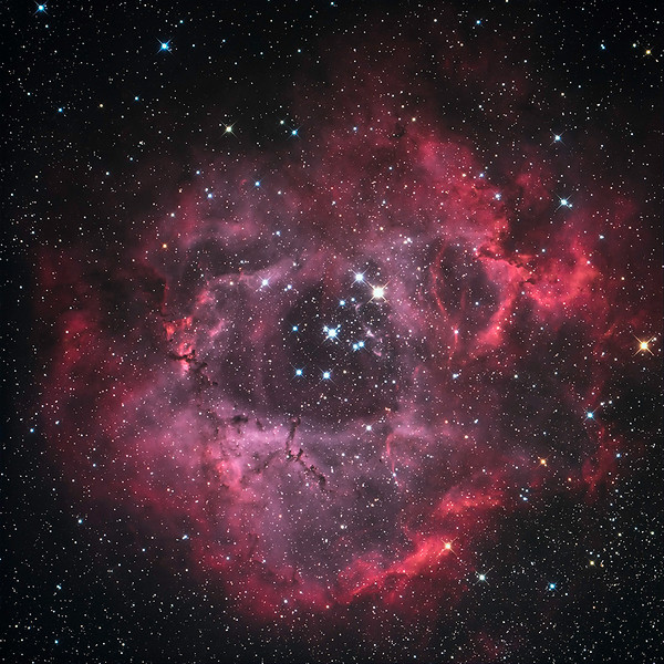 "the Rosette Nebula taken remotely from Bloomfield in Prince Edward County, from a scope in San Pedro de Atacama, Chile<br /> ASA 16"" f/3.6, FLI Proline 16803, Nova 120 direct drive<br /> 1x5 min exposure each of R, G, B and Ha unguided.<br /> Processed in CCD Stack, Maxim DL5, Photoshop CC and Lightroom CC"