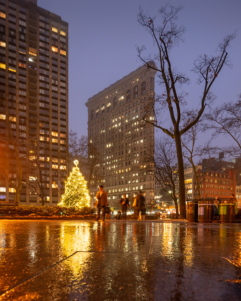 Madison Square Park, Flatiron Building, Christmas Tree, and reflections after the rain.