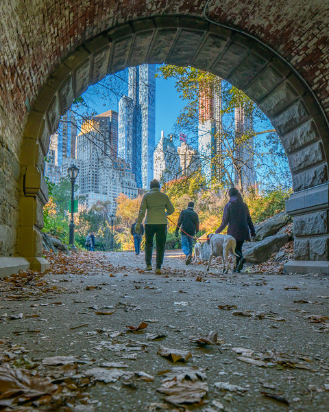Tunnel in Central Park, fall colors, and buildings on 59th Street.