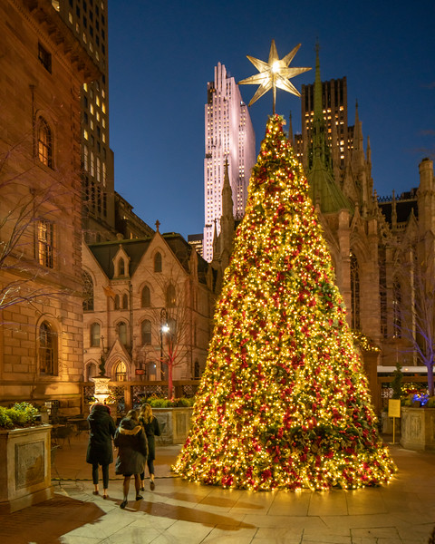 Lotte New York Palace Christmas Tree and Rockefeller Center at night.