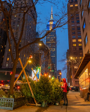 Picking out a Christmas Tree on 34th Street with the Empire State Building in the background.