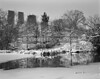 Central Park, 2014