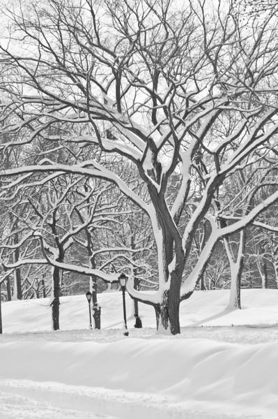 new_york_snow-1859