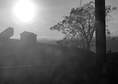 Late Afternoon Light II _ bw