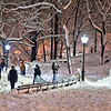 Blizzard in Central Park