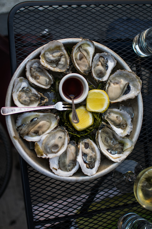Oysters at the Tangled Vine