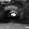 Tunnel in Prospect Park