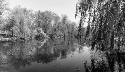The 'Pool' in Early Spring II _ bw
