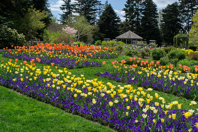 ny botanic gardens