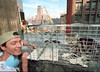 10/24/001-nerw york city-ground zero-`MIKE PHILLIPS  who rescues feral cats around the city  was brought  to a building's roof one block away from the world trade center where someone in an adjoining office spotted  the starving cat on the roof.