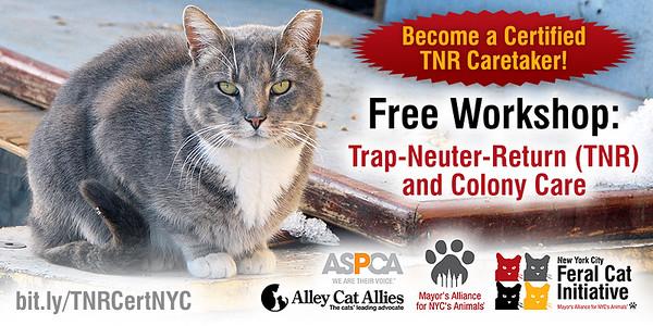 TNR Certification Workshop Banners 2017