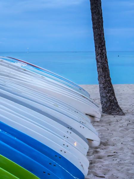 Surfboards and Palm Tree Trunk, Honolulu HI