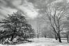 Snow Scene Black and White, Central Park, NY