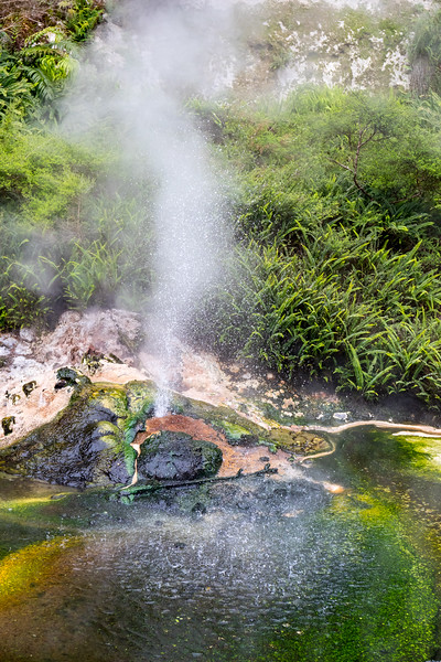 Fizzling hot spring in Waimangu valley