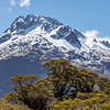 Mountain and trees at The Summit, Fiordland