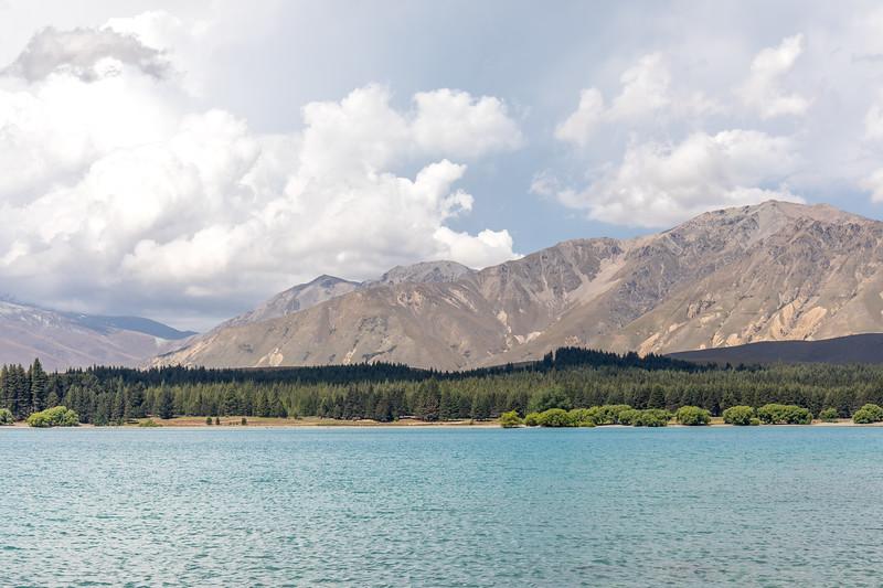 Trees, mountains and Lake Tekapo