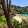 In the shade at Te Pukatea Bay, Abel Tasman National Park