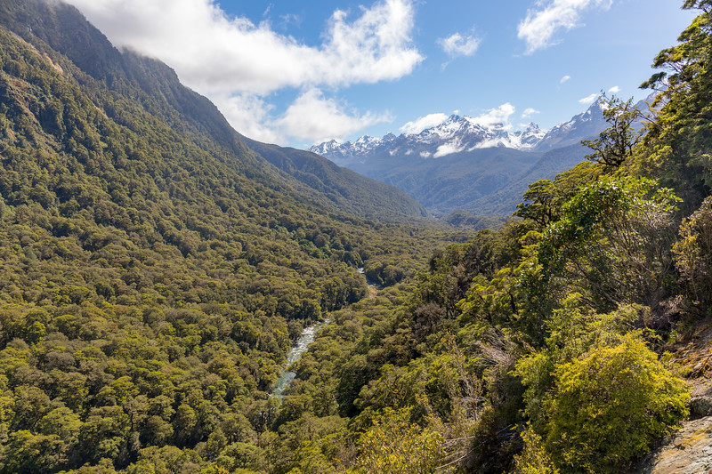 Hollyford Valley, Fiordland