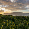 Sunset over Kapiti coast