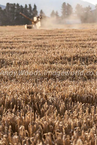 Andy Woods_090305_7691
