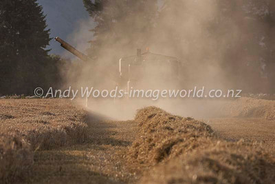 Andy Woods_090305_7694