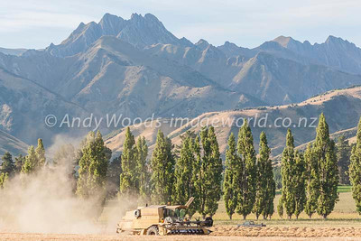 Andy Woods_090305_7682