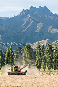 Andy Woods_090305_7678