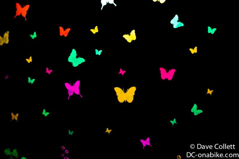 Glow in the dark butterlies!