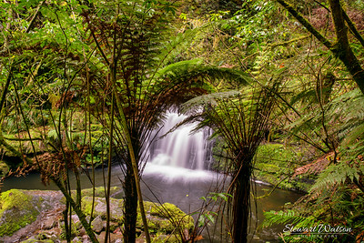 On of the lower waterfalls at the  McLean Falls in Catlins Forest Park