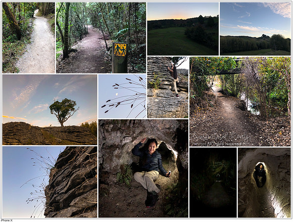 Waitomo walkway AND Waitomo caves.