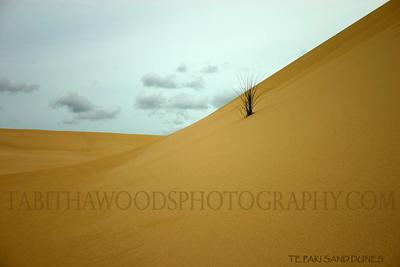 Tabitha Woods Photography- Te Paki Sand Dunes02