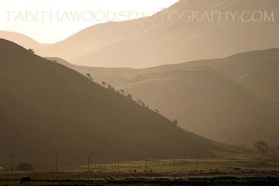 Tabitha Woods Photography- White Rock Ngapotiki Station