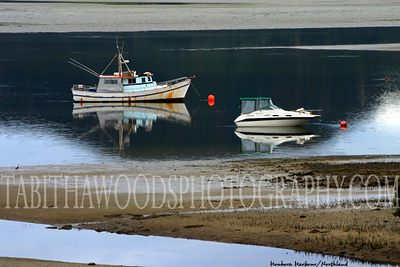 Tabitha Woods Photography- Houhora Harbour01