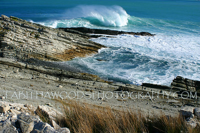 Tabitha Woods Photography- White Rock11