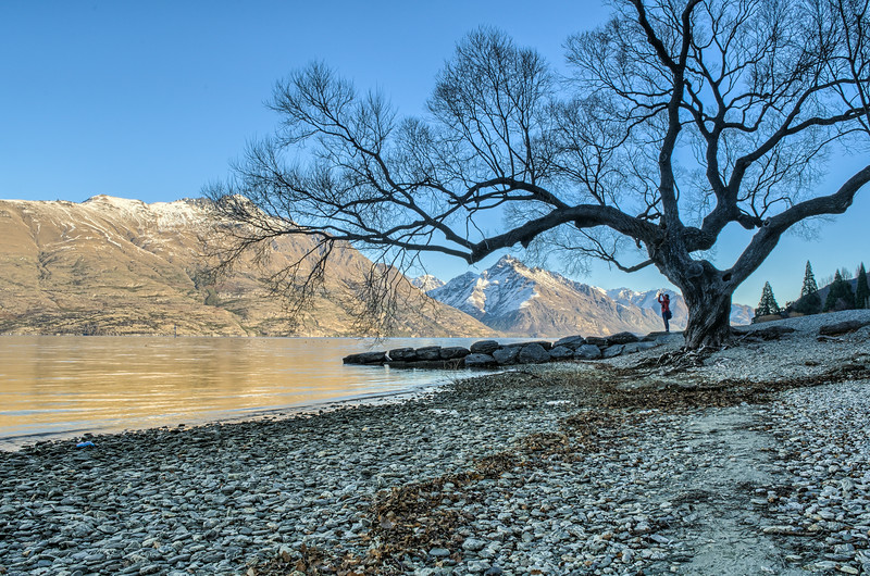 Wakatipu Lakeside