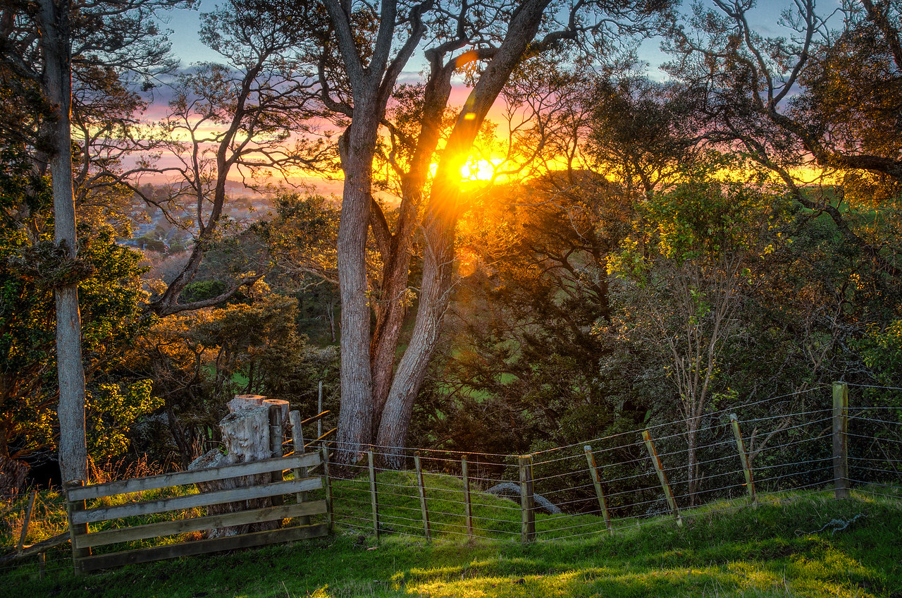 Auckland Rural Sunset