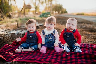 Cousins 2018-13