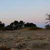 Dawn landscape, Sossusvlei, Namib Naukluft National Park