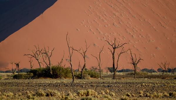 Namibia - Landscapes