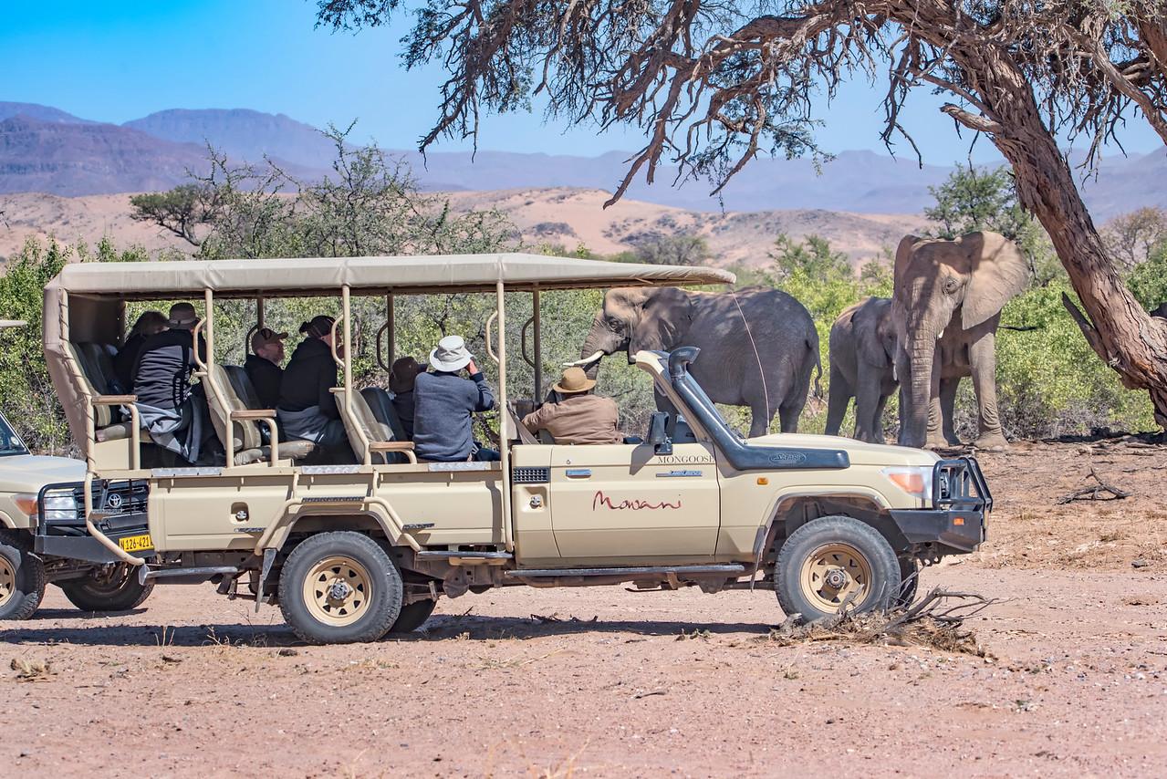 SafariVehicle viewing ElephantHuabRiver_NBA_1309