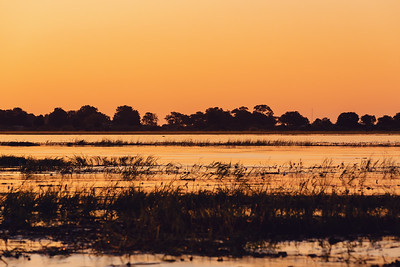 African sunset on Chobe river, Botswana
