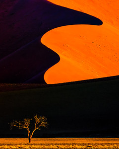Sossusvlei is a clay pan that is the end point of a usually dry river, the Tsauchab, in the interior of the Namib desert.  The dunes, among the tallest in the world, blocked the river 60,000 years ago.  The color of the dunes range from pale buff to deep red depending on the iron oxide content