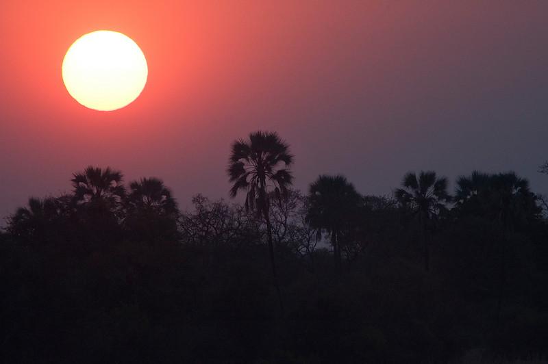 Zambezi_Sunset1